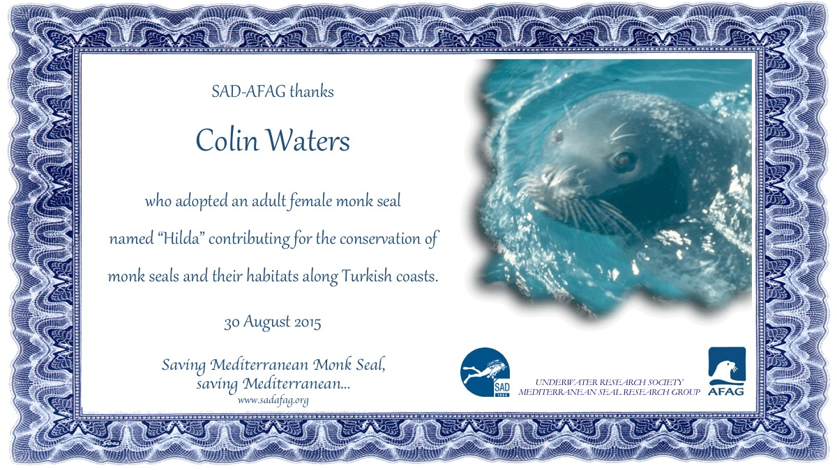 1 Adoption Certificate_Colin Waters