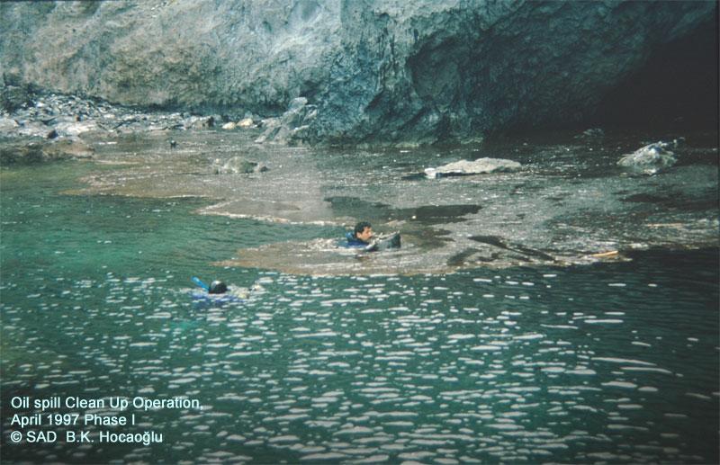 Gümüşlük Çavuş Adası Petrol Kirliliği Temizlik Operasyonu; AFAG üyeleri fok mağarası önünde, deniz yüzeyindeki petrolü topluyorlar ©SAD-AFAG Burak Kasımhocaoğlu