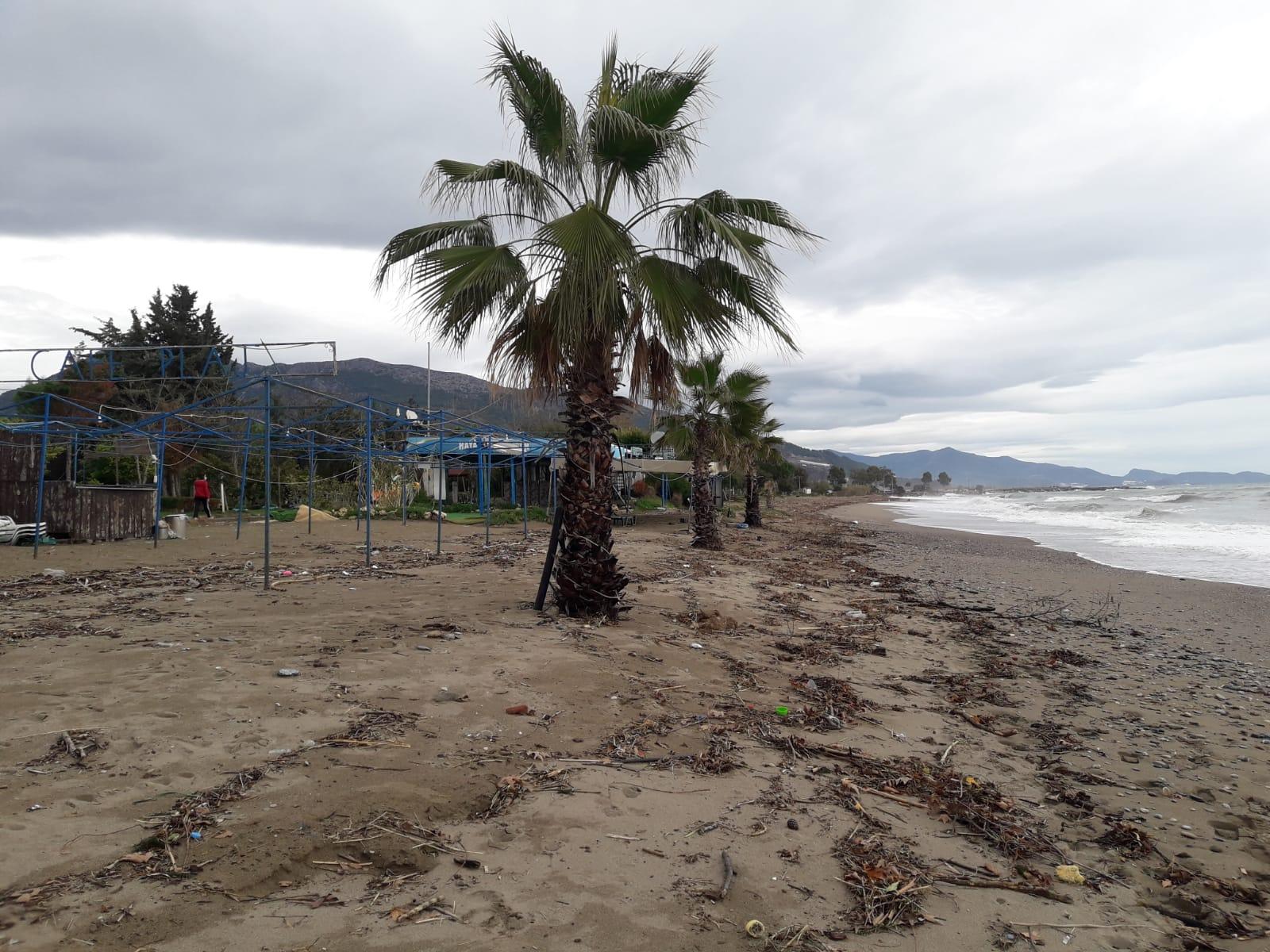 Anamur Kumsalı habitat tahribatı